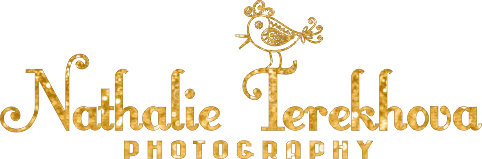 photont logo gold web 2
